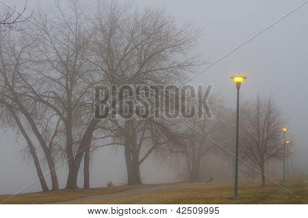 Lights And Fog Setting The Mood