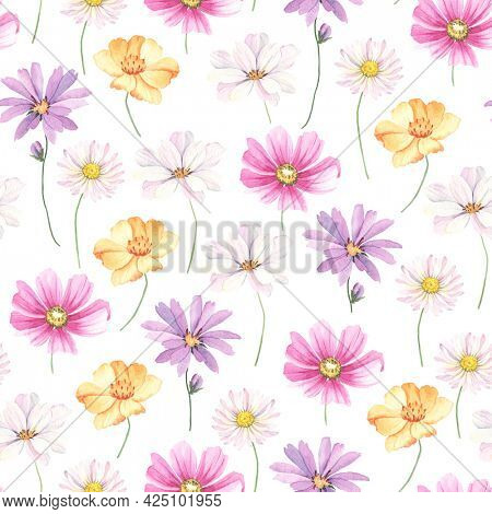 Floral pattern with buds flowers cosmos, coreopsis and marguerite. Watercolor delicate seamless print on white background.