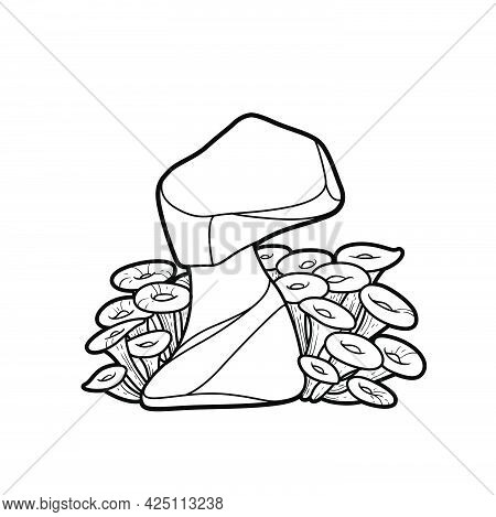 The Stone Around Which Anemones Grow Coloring Book Linear Drawing Isolated On White Background