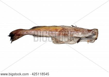 Raw Pollock Fish, Isolated On A White Background.pollock Carcass Without A Head Side View.