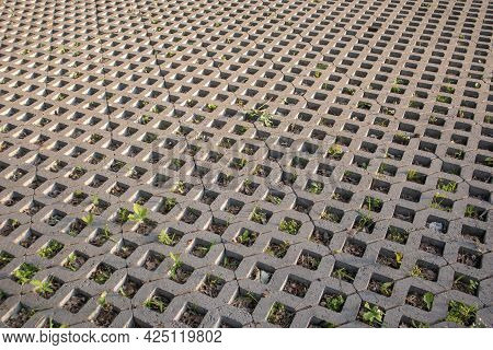 Background From Paving Slabs With Grass Sprouting Through Them. Stone Tiles On The Sidewalk. Footpat