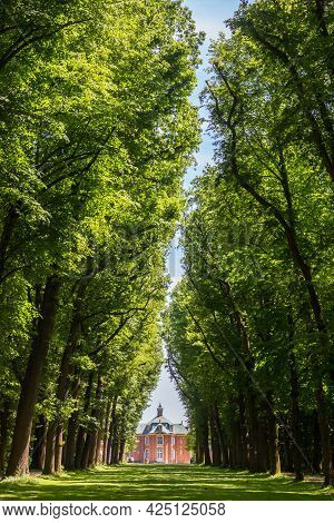 High Trees At The Path Leading To The Historic Castle Clemenswerth In Sogel, Germany