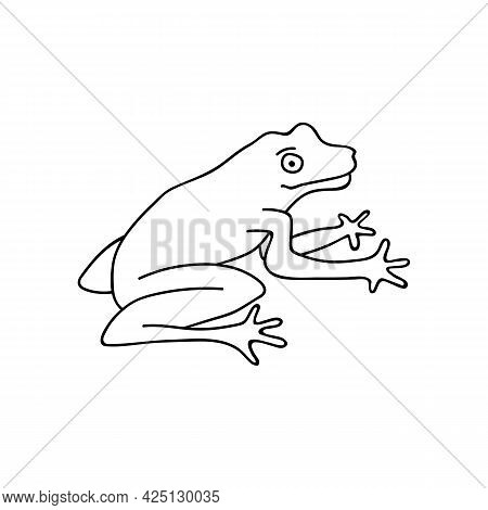 Single Hand Drawn Frog. Funny Toad. Doodle Vector Illustration. Isolated On A White Background.