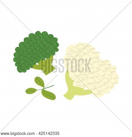 Broccoli And Cauliflower. Flat Hand Drawn Illustration Of Green Vegetables With Scribble Texture.