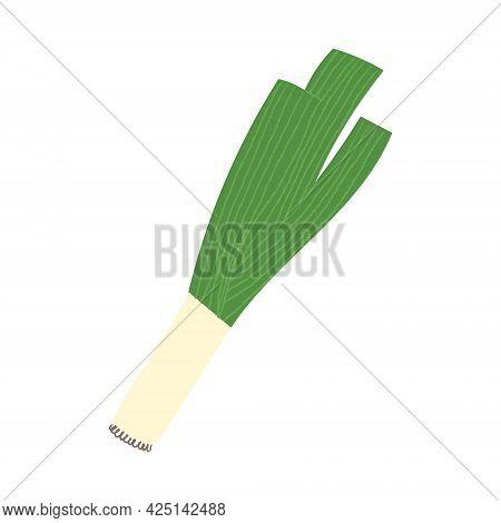 Leek. Flat Hand Drawn Illustration Of Garden Green Onion.