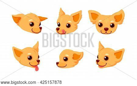 Chihuahua Smiling Face With Tongue. Head Of A Puppy Isolated In White Background. Vector Illustratio