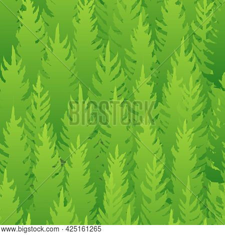 Forest Silhouette Scene. Seamless Pattern. Landscape With Coniferous Trees. Beautiful View. Pine And