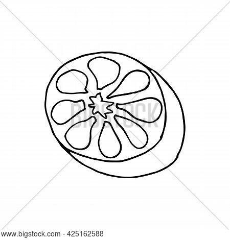 Vector Hand Drawn Lemon. Lemon Icon In Doodle Style. Tropical Fruit. Perfect For Summer Design. Lemo