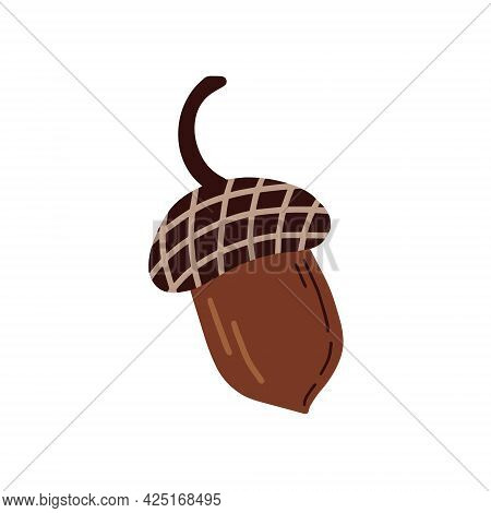 Hazelnuts On A White Background. Vector Illustration In Doodle Style