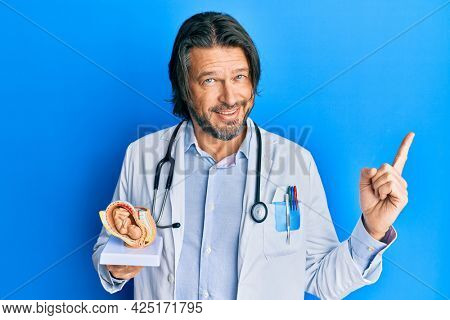 Middle age handsome gynecologist man holding anatomical model of female uterus with fetus smiling happy pointing with hand and finger to the side