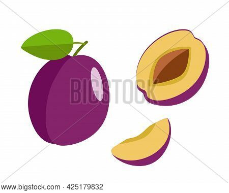 Ripe Plum Whole In A Purple Peel, Half A Plum With A Stone And A Plum Slice. Vector Illustration Of