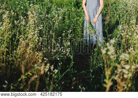 Girl In Light Blue Linen Dress With Bunch Of Wildflowers On A Summer Meadow In Sunlight.  Summer Bac