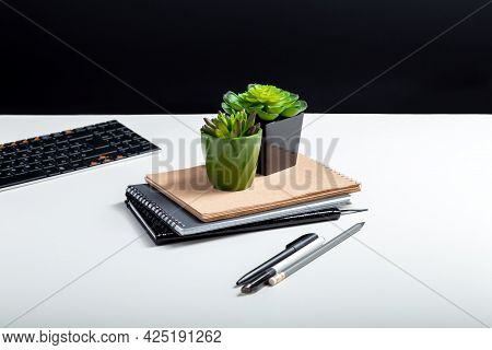 Office Artificial Flowers Succulents In Small Pots. Landscaping Of Workplace At Home And Office. Suc