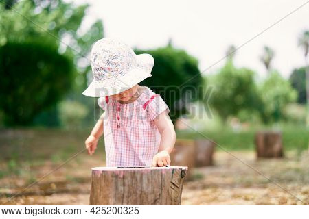 Little Girl In A Hat Runs Her Finger Over A Tree Stump