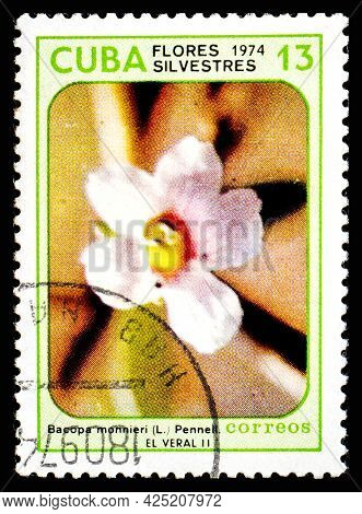 Cuba - Circa 1974: A Postage Stamp From Cuba Showing Garden Flowers Bacopa Monnieri