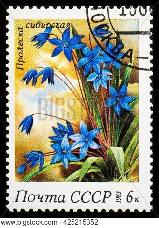 Russia, Ussr - Circa 1983: A Postage Stamp From Ussr Showing Flowers Scilla Siberica