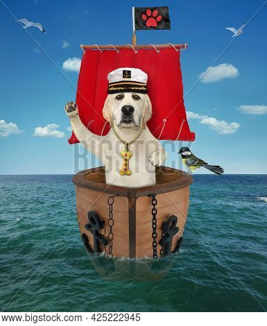 A Dog Labrador Captain In A Sailor's Hat Is On A Sailboat With A Red Sail On The Sea.