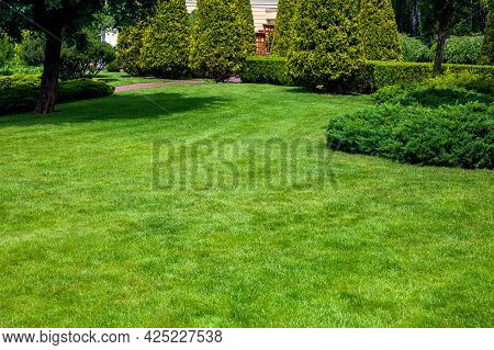 A Park With Evergreen Arborvitae Thujas And Evergreen Hedge Among The Deciduous Trees Of The Garden