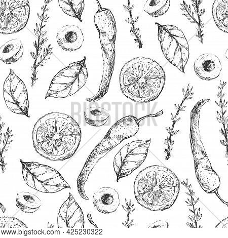 Cuisine Graphic Elements And Herbs Pattern Design. Vintage Hand-drawn Vegetables And Spices Illustra