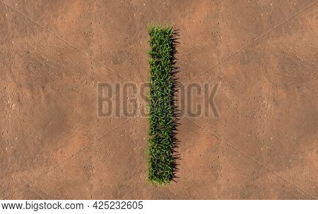 Concept conceptual green summer lawn grass symbol shape on brown soil or earth background, font of I. 3d illustration metaphor for nature, conservation, organic, growth, environment, ecology, spring