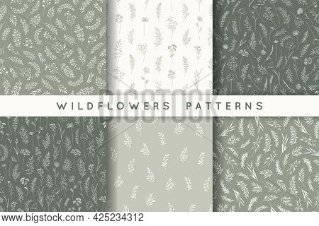 Set Of Seamless Patterns With Leaves, Herbs, Wildflowers. Silhouettes Of Branches, Natural Hand Draw