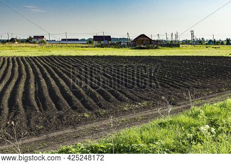 Plowed Field Against The Background Of Village Buildings On A Sunny Day