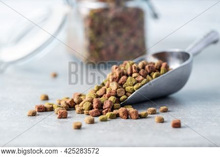 Dry kibble animal food. Dried food for cats or dogs in scoop.