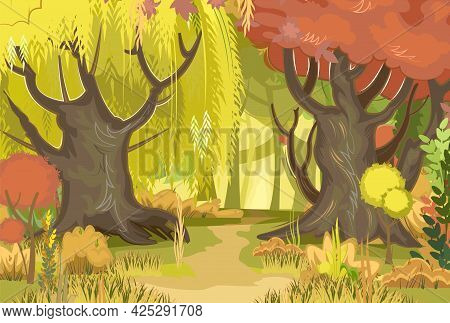 Autumn Forest Road. Green, Yellow And Red Plants. The Edge. Glade. Beautiful Thin And Graceful Trees