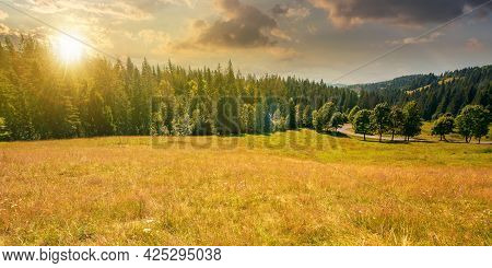 Mountainous Countryside Panorama At Sunset. Trees On The Meadow Along The Road. Coniferous Forest On