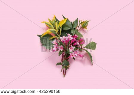 Greeting Card With Pink Weigela Flowers For Mother's Day Or Birthday. Creative Design With Copy Spac