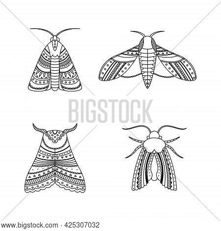 Set Of Moths In Boho Styles. Geometric Tribal Outline Illustration.