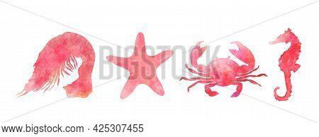 Set Of Aquarelle Red Sea Animals On White Background Hand-drawn Digital Illustration: Shrimp, Starfi