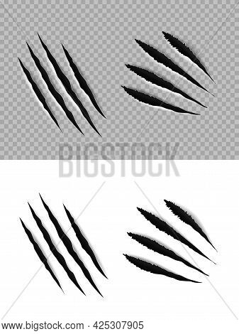 Claw Marks And Scratches Of Vector Animal Paws, Tiger, Wild Cat, Bear Or Lion Slashes And Torn Trace