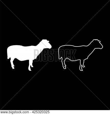Sheep Ewe Domestic Livestock Farm Animal Cloven Hoofed Lamb Cattle Silhouette White Color Vector Ill