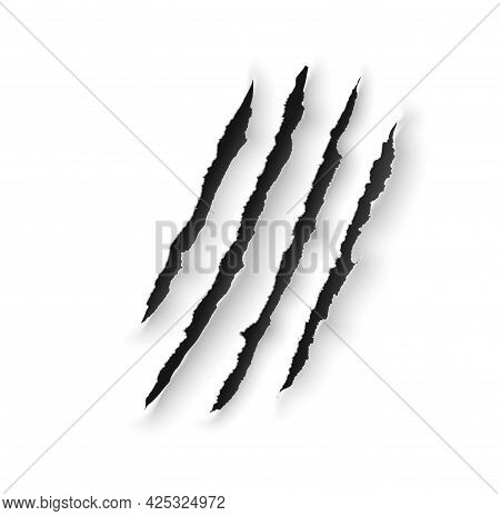 Animal Claw Marks Scratches Of Wild Bear, Tiger, Lion Or Dragon. Vector Slash Traces With Torn Edges