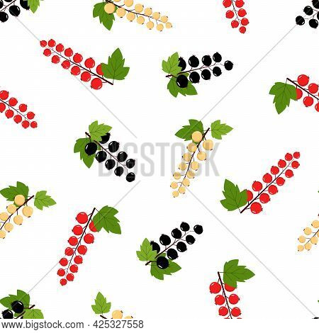 Seamless Pattern Of Different Currants, Black Red And White. Vector Illustration Of Cartoon Berries.