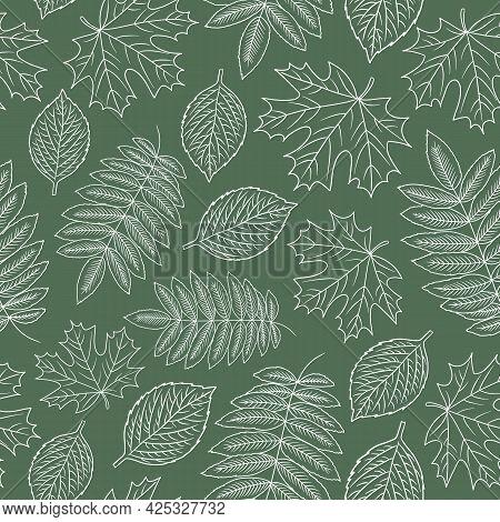 Outline Falling Leaves Green Doodle Seamless Pattern. Contour Autumn Maple, Rowan, Aspen Tree Leaf.