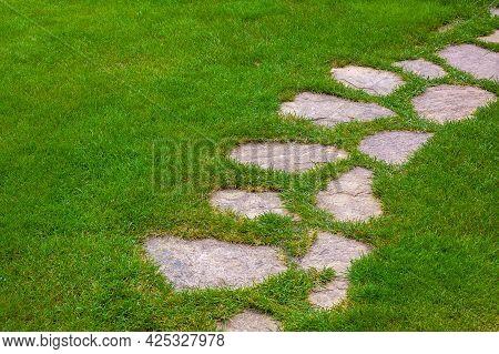 Rough Ornamental Stone Path Paved In Green Backyard Lawn, Curved Backyard Walkway Landscaping, Nobod