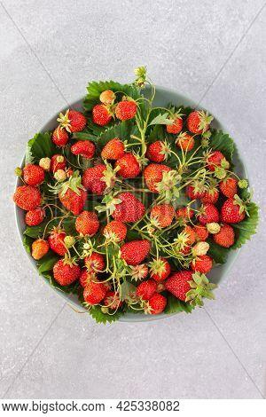 Fresh Berries From The Garden