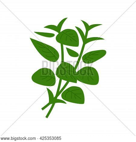 Heap Of Green Basil. Vector Illustration Isolated On White Background.