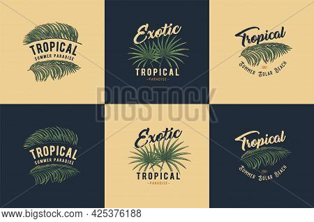 Tropical Or Exotic Plant For T-shirt Print. Hawaii And Summer Surfing. Palm For Tropic Surf Design