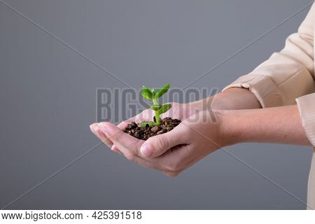 Midsection of caucasian businesswoman holding plant seedling, isolated on grey background. business technology, communication and growth concept.