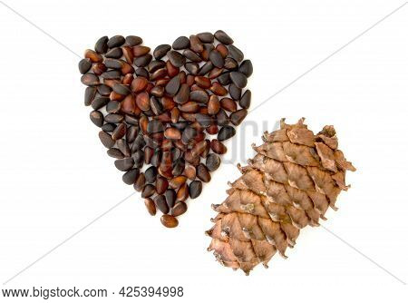 Cedar Pine Cones With Nuts Isolated On White Background.