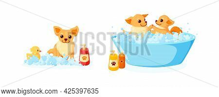 Dog Grooming In A Bathtub With Rubber Duck And Shampoo. Set With Chihuahua In Soap Foam Isolated In