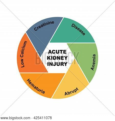 Diagram Concept With Acute Kidney Injury Text And Keywords. Eps 10 Isolated On White Background