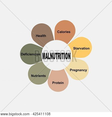 Diagram Concept With Malnutrition Text And Keywords. Eps 10 Isolated On White Background