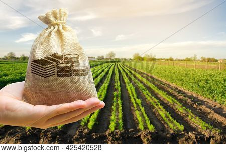 Farmer Holding A Money Bag On The Background Of Carrot Plantations. Agricultural Startups. Lending A