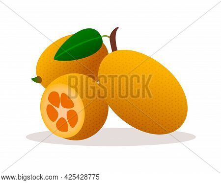 Tangerines Fruits, Leaves And Twigs Isolated On White Background. Vector Illustration. Three Ripe Ta