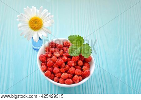 Forest Strawberries In White Bowl And Chamomile Flower On Light Blue Wooden Background, Top View. Ch
