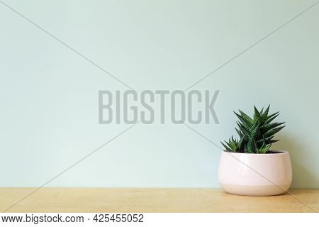 Office Table With A Plant On A Background Of An Empty Colored Wall. Home Office Table And Workplace